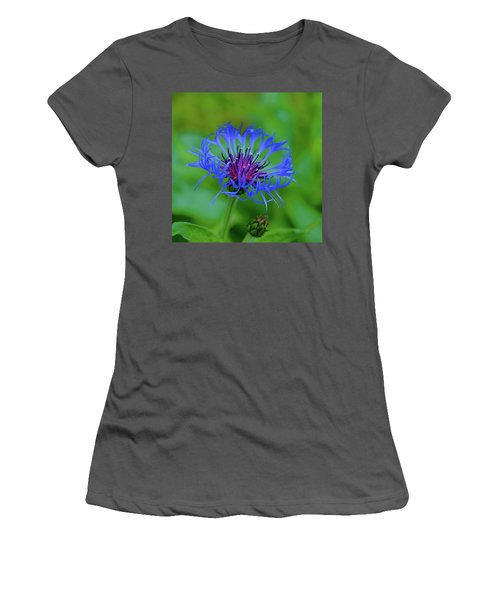 Mountain Cornflower Women's T-Shirt (Athletic Fit)