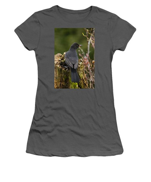Mr Birdy Women's T-Shirt (Junior Cut)