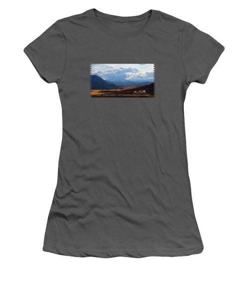 Mt. Denali National Park Women's T-Shirt (Athletic Fit)