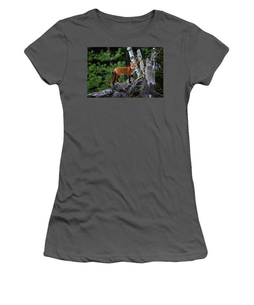 On The Lookout Women's T-Shirt (Junior Cut) by Gary Hall