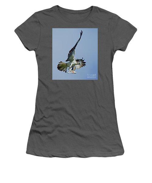 Osprey Success Women's T-Shirt (Junior Cut) by Larry Nieland