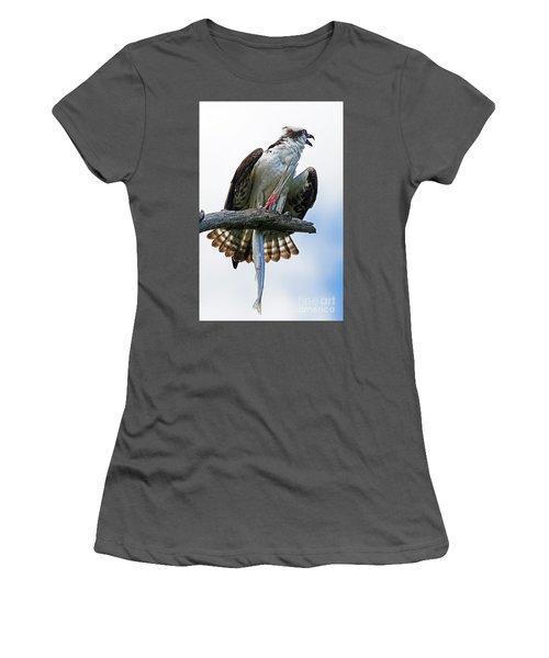 Osprey With Needlefish Women's T-Shirt (Junior Cut) by Larry Nieland