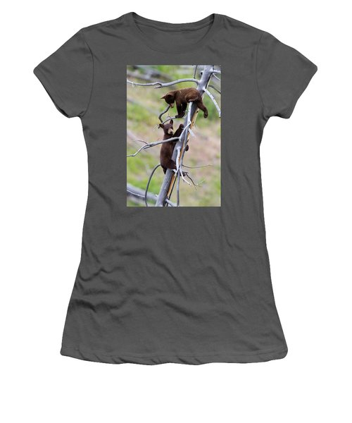 Pair Of Bear Cubs In A Tree Women's T-Shirt (Athletic Fit)