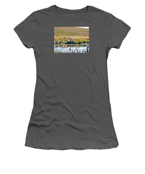 Pastoral Sheep By Pond Women's T-Shirt (Junior Cut) by Deborah Moen