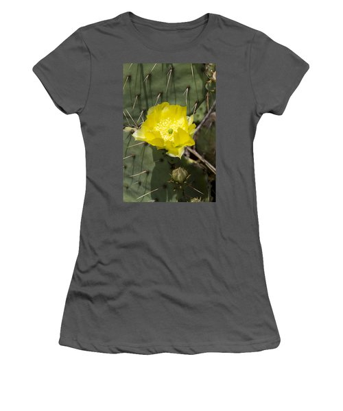 Prickly Pear Cactus Blossom - Opuntia Littoralis Women's T-Shirt (Athletic Fit)
