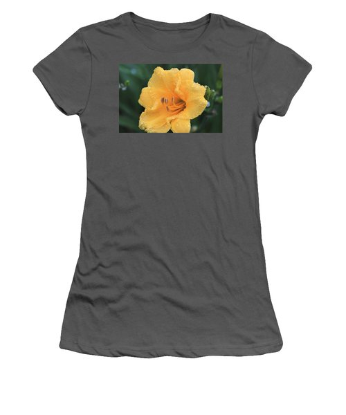 Women's T-Shirt (Athletic Fit) featuring the photograph Rain Kissed Stella De Oro by Sheila Brown