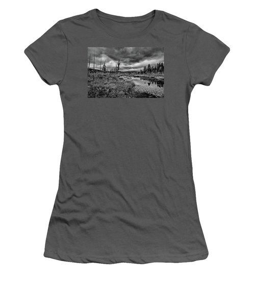 Women's T-Shirt (Athletic Fit) featuring the photograph Raquette Lake Bog by David Patterson