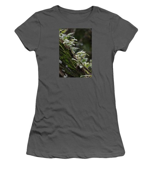 Reach For The Light Women's T-Shirt (Junior Cut) by Christopher L Thomley