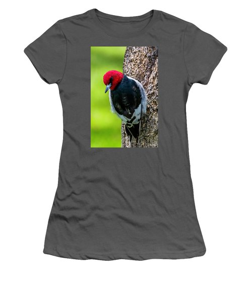 Red-headed Woodpecker Women's T-Shirt (Athletic Fit)