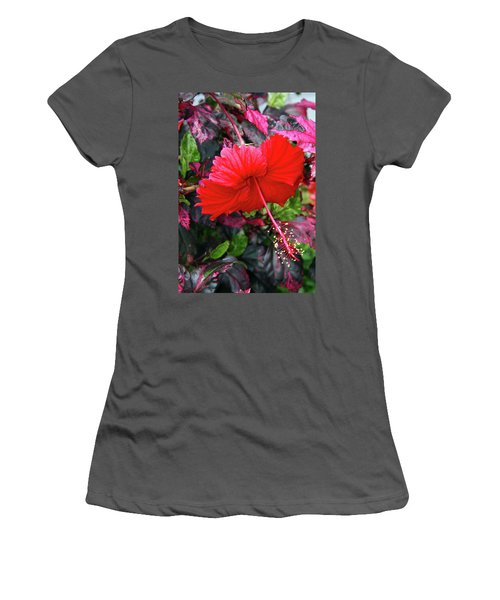Red Hibiscus  Women's T-Shirt (Junior Cut) by Inspirational Photo Creations Audrey Woods