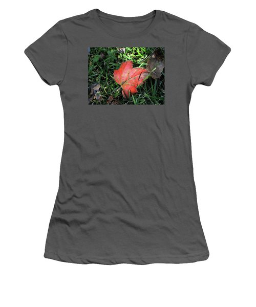 Red Leaf Against Green Grass Women's T-Shirt (Junior Cut) by Michele Wilson