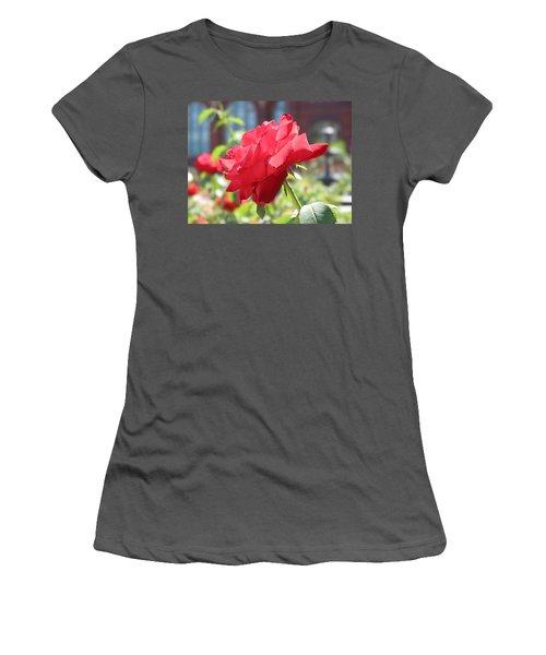 Red Rose Women's T-Shirt (Junior Cut) by Brian McDunn