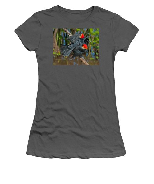 Red-winged Blackbird Women's T-Shirt (Athletic Fit)