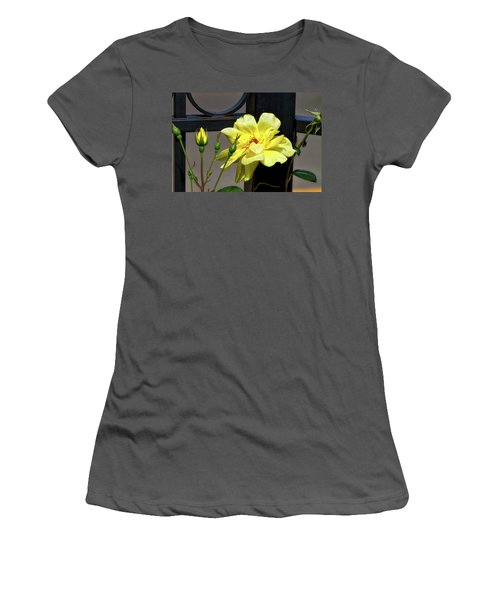 Rose On Wrought Iron Women's T-Shirt (Athletic Fit)