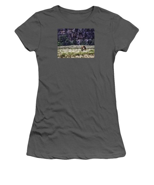 Safe In The Valley Women's T-Shirt (Athletic Fit)