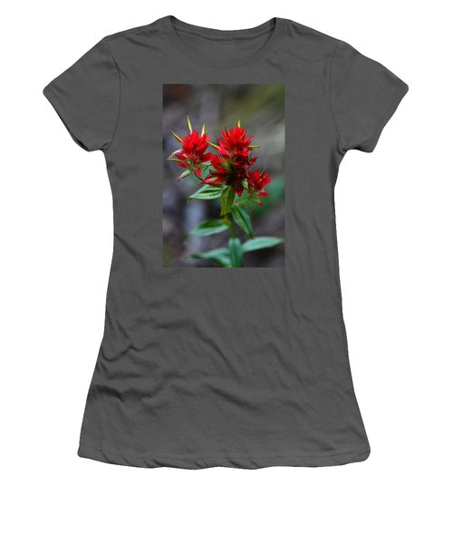 Scarlet Red Indian Paintbrush Women's T-Shirt (Athletic Fit)