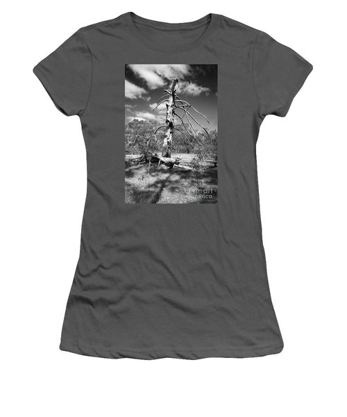 Women's T-Shirt (Athletic Fit) featuring the photograph Sculpted By Time by Linda Lees