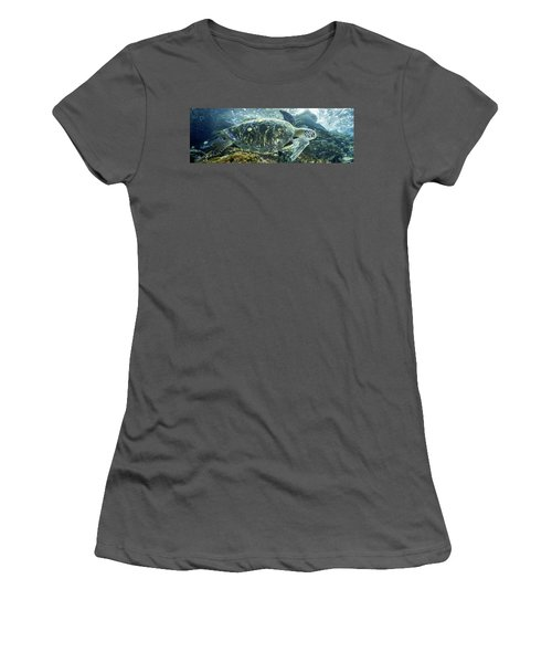 Sea Of Cortez Green Turtle Women's T-Shirt (Athletic Fit)