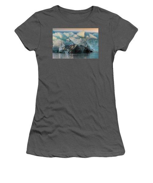Seal Nature Sculpture Women's T-Shirt (Junior Cut) by Allen Biedrzycki