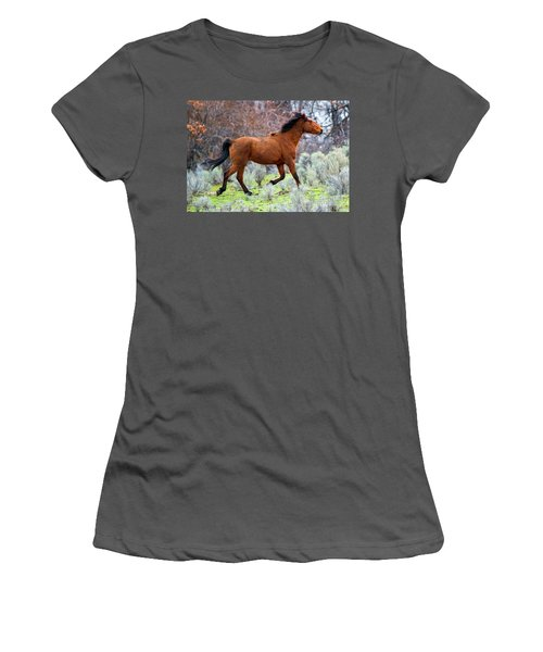 Women's T-Shirt (Junior Cut) featuring the photograph Shaggy And Proud by Mike Dawson
