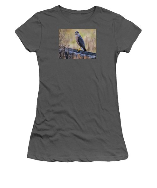 Women's T-Shirt (Junior Cut) featuring the photograph Shakerag Coopers Hawk by Barbara Bowen