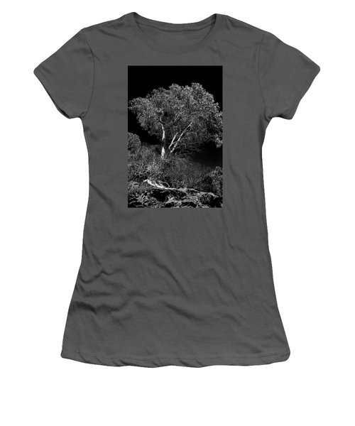 Women's T-Shirt (Junior Cut) featuring the photograph Shoreline Tree by Roger Mullenhour