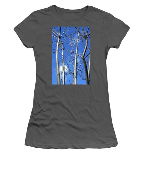 Silver Smooth Women's T-Shirt (Athletic Fit)