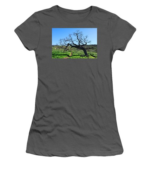 Single Tree Over Narrow Path Women's T-Shirt (Athletic Fit)