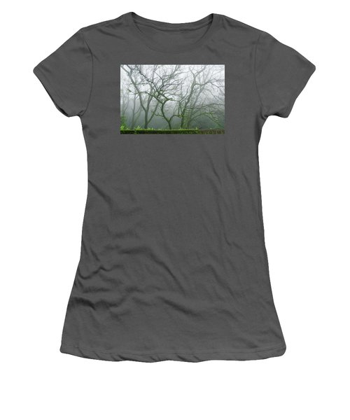 Skn 3720 Monsoon Landscape Women's T-Shirt (Athletic Fit)