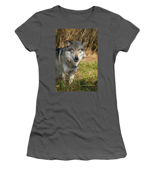 Smiling Wolf Women's T-Shirt (Athletic Fit)