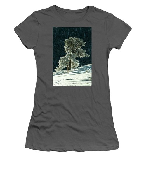 Snow Covered Tree - 9182 Women's T-Shirt (Athletic Fit)