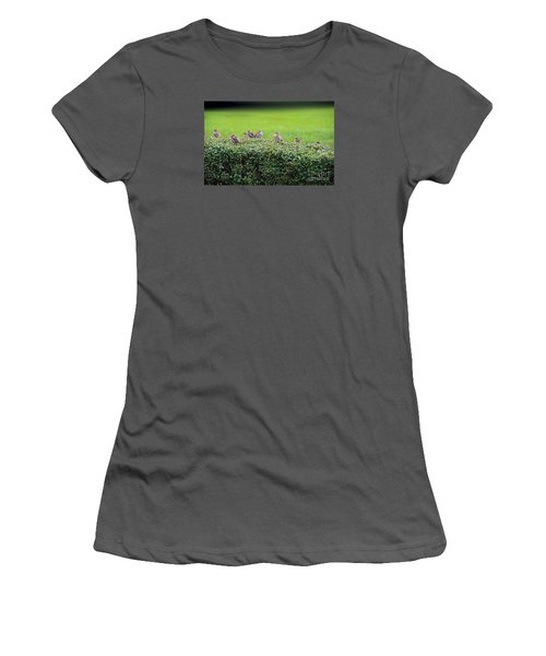 Women's T-Shirt (Junior Cut) featuring the photograph Sparrows Gathering Place  by Yumi Johnson