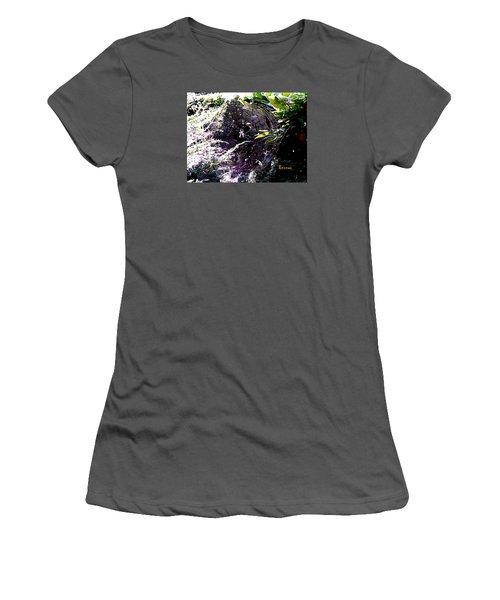 Spider And Web 2 Women's T-Shirt (Junior Cut) by Sadie Reneau