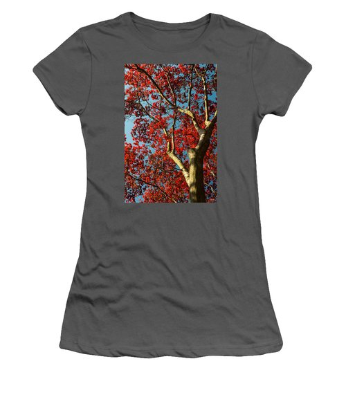 Women's T-Shirt (Junior Cut) featuring the photograph Spring Maple by Dana Sohr