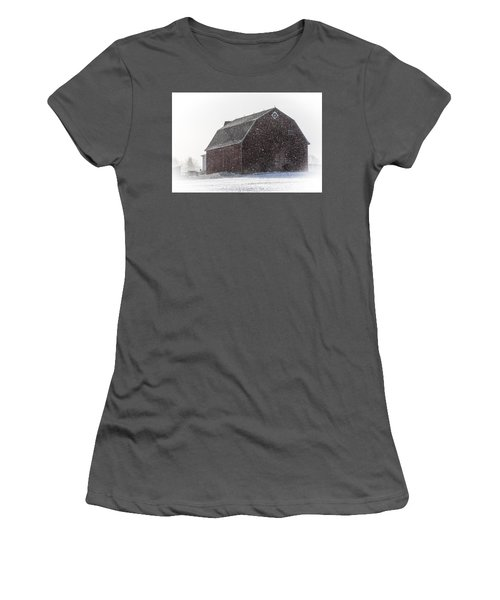 Standing Tall In The Snow Women's T-Shirt (Athletic Fit)
