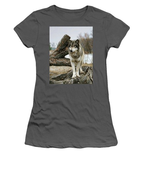 Still Wolf Women's T-Shirt (Athletic Fit)