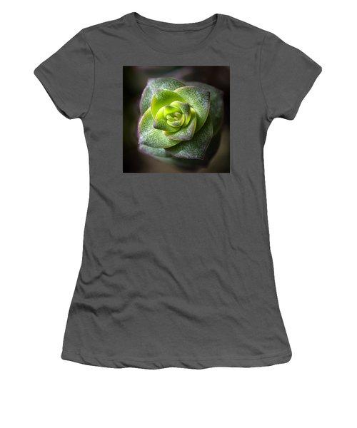 Women's T-Shirt (Junior Cut) featuring the photograph Succulent Plant by Catherine Lau
