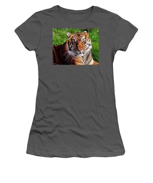 Sumatran Tiger  Women's T-Shirt (Athletic Fit)