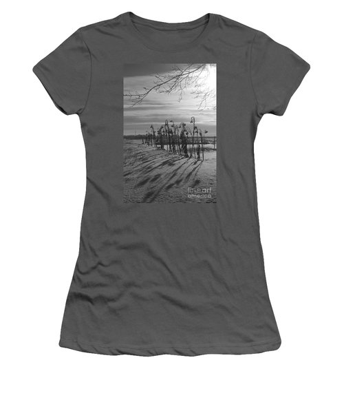 Sunflowers In The Winter Sun Women's T-Shirt (Athletic Fit)