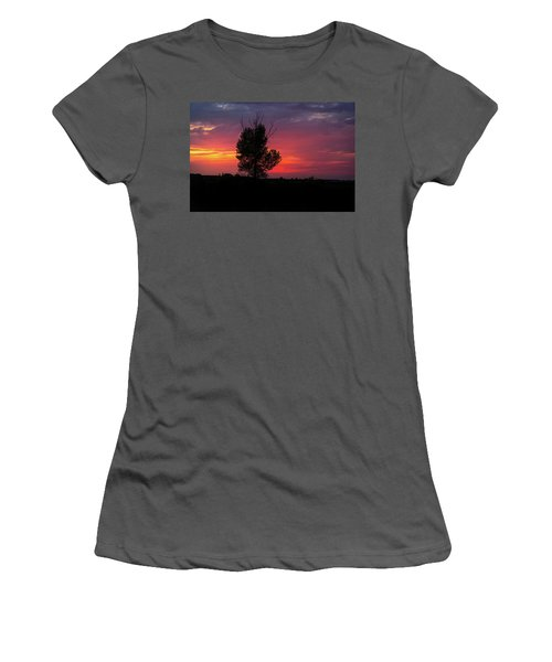 Sunset At The Danube Banks Women's T-Shirt (Athletic Fit)
