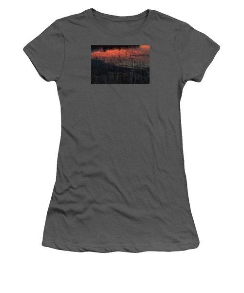 Sunset Reeds Women's T-Shirt (Junior Cut) by Gary Eason