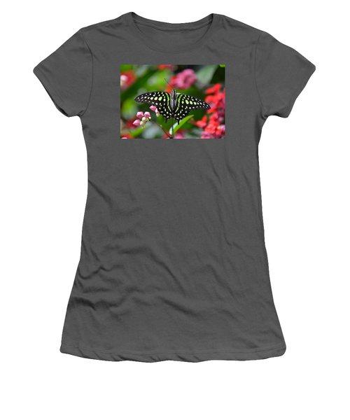 Tailed Jay4 Women's T-Shirt (Junior Cut) by Ronda Ryan