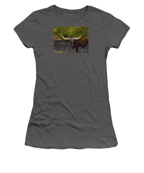 Women's T-Shirt (Junior Cut) featuring the photograph Texas Long Horn Bull by Melissa Messick