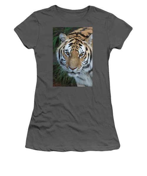 Women's T-Shirt (Junior Cut) featuring the photograph The Hunter by Laddie Halupa