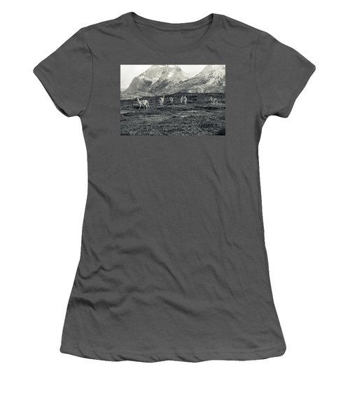 The Lamas Women's T-Shirt (Junior Cut) by Andrew Matwijec