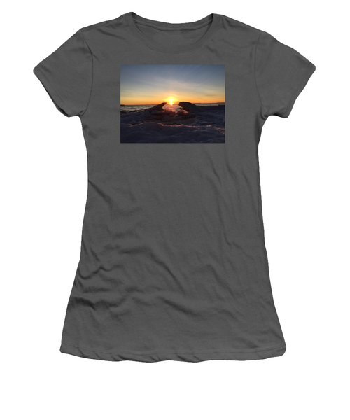 Women's T-Shirt (Junior Cut) featuring the photograph The Walrus And The Bear by Paula Brown