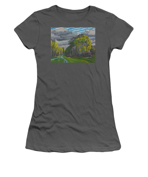 Thirty Shades Of Green Women's T-Shirt (Athletic Fit)