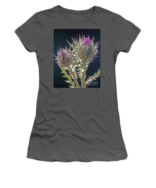 Thistle Women's T-Shirt (Athletic Fit)