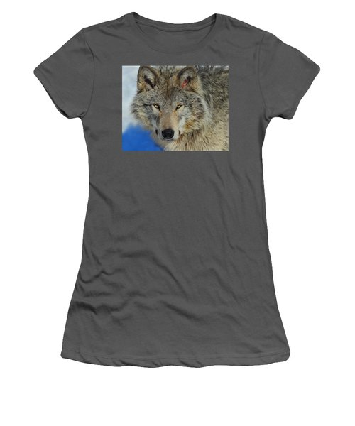 Timber Wolf Portrait Women's T-Shirt (Athletic Fit)