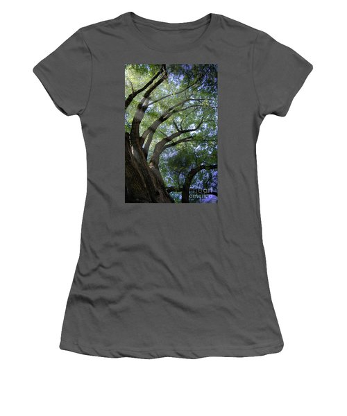 Women's T-Shirt (Junior Cut) featuring the photograph Tree Rays by Brian Jones